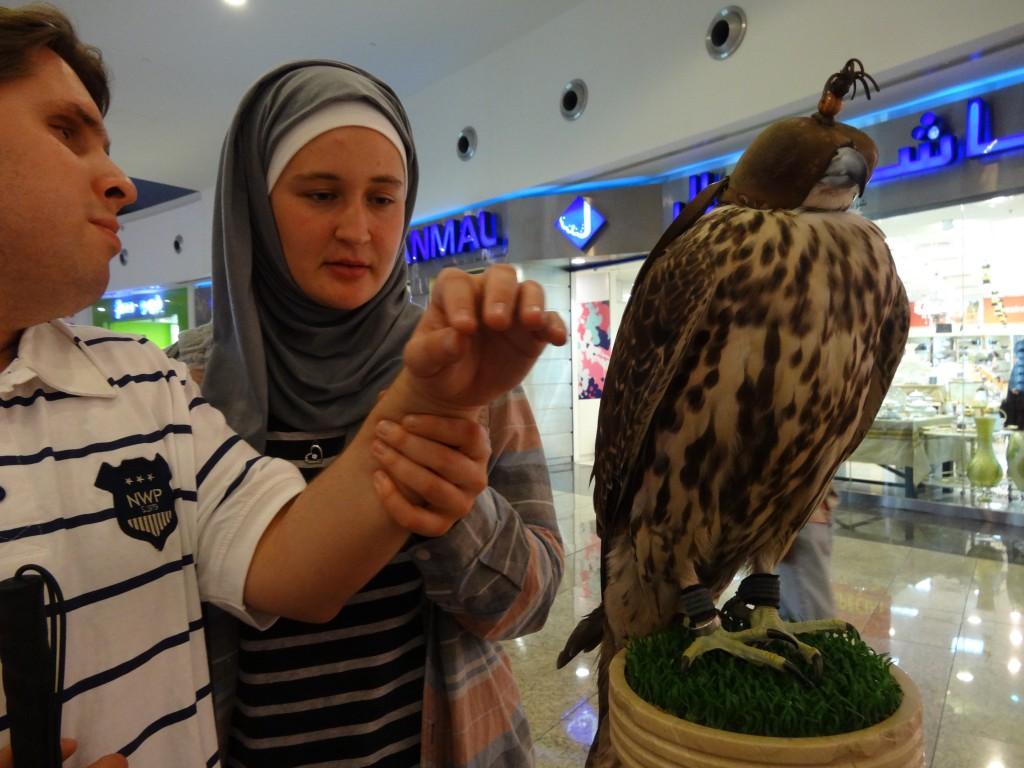 Natale meets falcon.